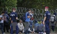 移民问题:EC对捷克、匈牙利和波兰提起诉讼