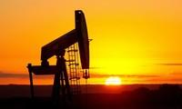 ราคาน้ำมันดิบมีแนวโน้มปรับตัวสูงขึ้นตั้งแต่กลางปี 2017