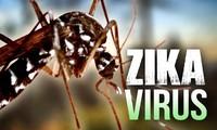 คิวบาพบผู้ป่วยติดเชื้อไวรัสซิการายแรก