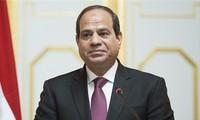 อียิปต์ผลักดันการจัดตั้งเขตการค้าเสรีในแอฟริกา