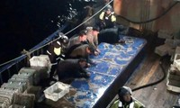 สาธารณรัฐเกาหลีจับกุมเรือจีนที่จับปลาอย่างผิดกฎหมาย