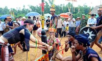 Nacionalidades de Vietnam contribuyen a preservar identidad cultural del país