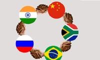 Los BRICS reúnen fuerzas para un mayor desempeño en el mundo