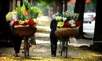 Belleza milenaria de Hanoi