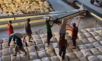 Impulso a exportaciones a ASEAN, nueva orientación de empresas vietnamitas