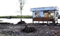Fortalecen la adaptación al cambio climático en el Delta del Río Mekong