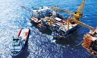 PetroVietnam insiste en la explotación petrolera para enriquecer la patria