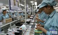 Empresas de capital foráneo contribuyen al desarrollo económico de Vietnam