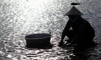La isla de Ly Son en temporada de aguas bajas