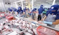 Anuncia Brasil reanudación de compras del pez Tra de Vietnam
