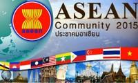 Vietnam por construir la comunidad política y de seguridad de ASEAN