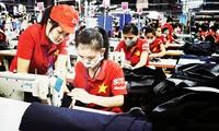 Sector privado, fuerza impulsora para el desarrollo de Vietnam
