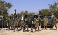 Varios atentados suicidas en Camerún dejan al menos 25 muertos