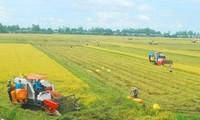 Garantizar la calidad de la marca y de los productos agrícolas nacionales