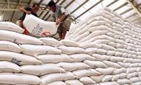 Establecer marca nacional del arroz para elevar su valor de exportación
