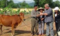 Veteranos vietnamitas y estadounidenses por mejoramiento de relaciones bilaterales