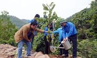 Jóvenes voluntarios de Quang Ninh por la prosperidad de la provincia