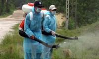 Vietnam no registra ningún caso positivo con virus zika