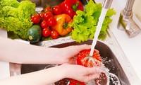 Vietnam se esfuerza para garantizar la seguridad alimentaria