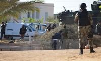 Desmantela Túnez conspiración de ataque terrorista