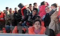 Aumenta el número de refugiados en Italia