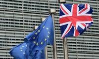 """Más de 300 empresarios británicos se pronuncian a favor del """"Brexit"""""""