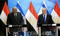 Egipto contribuye a esfuerzos comunes en busca de paz en Oriente Medio