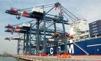 Vietnam y Holanda colaboran en el desarrollo de la industria marítima