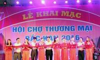 Realizan actividades de promoción comercial en provincia norvietnamita