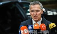 OTAN pretende fortalecer la defensa colectiva