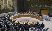 Consejo de Seguridad de la ONU aprueba resolución relativa al cese del fuego en Siria