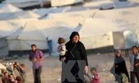 Más de 125 mil personas desplazadas en la ofensiva de Mosul