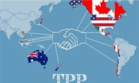 Futuro del TPP sin Estados Unidos