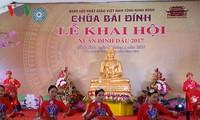 Festivales primaverales se efectúan en varias localidades vietnamitas