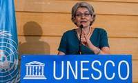 Unesco apoyará reinserción de las FARC-EP a la educación