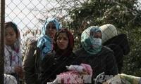 Europa necesita inmigrantes para desarrollar su economía