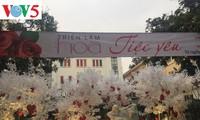 """Exposición """"Fiesta del Amor"""", un destino atractivo para enamorados y amantes de flores"""