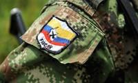 Colombia: FARC comienza proceso de registro de armas