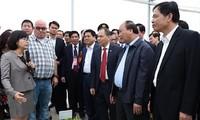 Provincia norteña de Ha Nam promueve agricultura de alta tecnología