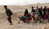 Iraq retoma más de un tercio de la zona occidental de la ciudad de Mosul