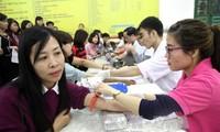Recaudan en Phu Tho mil unidades de sangre en el Festival Primavera Rosada
