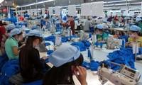 Sector textil vietnamita adopta medidas para lograr su objetivo de crecimiento