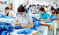 Intensifican protección de derechos de trabajadores vietnamitas en el extranjero