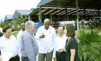 Delegación cubana visita granja lechera en la provincia de Son La
