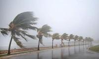 Cuba y Estados Unidos preparados para el huracán Irma