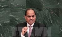 Presidente egipcio muestra su disposición de apoyar el proceso de paz en Oriente Medio