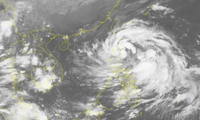 Toman medidas activas para enfrentarse a un nuevo huracán en Vietnam