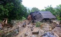 Japón brinda asistencia urgente a las zonas afectadas por inundaciones en Vietnam