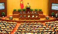 Votantes vietnamitas confían en los diputados