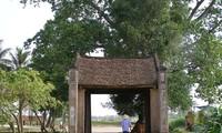 Desa dan faktor-faktor yang menciptakan wajah desa Vietnam
